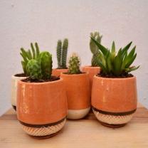 PURO cerámica 6